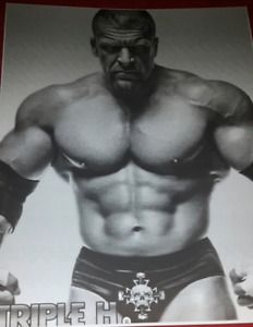 Triple H wwe photo print