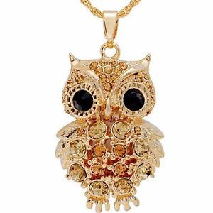 Beautiful Long Chain Necklace with Owl Pendant