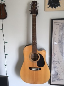 Takamine G series acoustic / electric