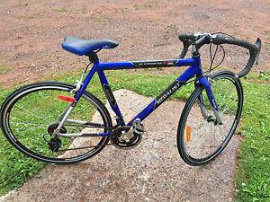 Wanted: 21 speed bicycle