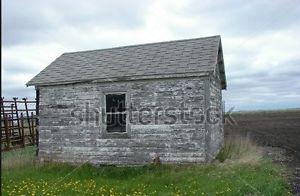 Wanted: barnwood rough mill lumber