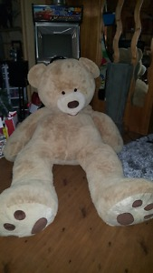 8 ft bear