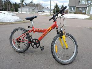 "Boys 20"" Bike - CCM - 6 speed"
