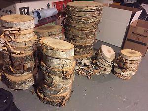 Birch wood sections & pinecones