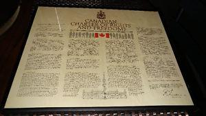 Canadian Charter of Rights and Freedoms, Framed
