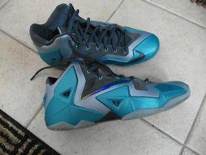 Nike Lebron James Sneakers