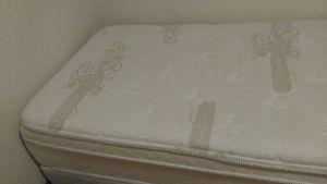 Twin mattress, Boxspring, and Bed frame
