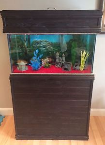 Wanted: Fish tank with stand for sale