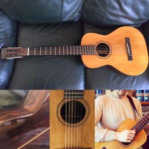 Washburn Parlor Guitar (BRAZILIAN ROSEWOOD /