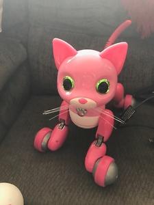 Pink zoomer kitty