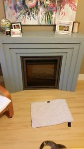 Electric Fireplace Insert and Base