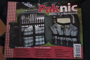 Picnic Set for 4 - in a Backpack!