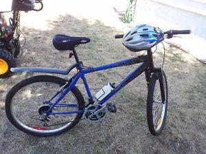 21 speed Miele Mountain Bike