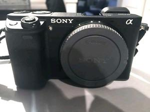 Wanted: Sony A w/ mm kit lens