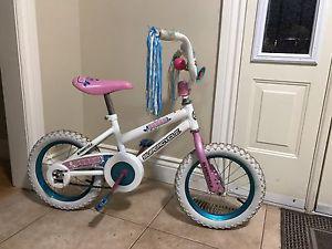"""Bike Supercycle 14"""" wheels"""
