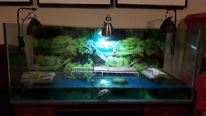 Extra large fish tank