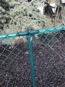 FREE CHAIN LINK FENCE.