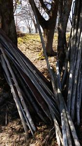 Misc cedar posts for garden
