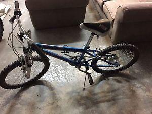 Girls 20 inch 6 speed bicycle (Nakamura)