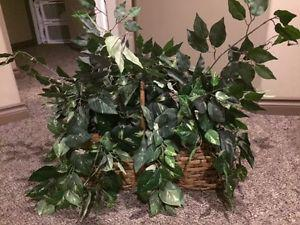 Artificial plant in a basket