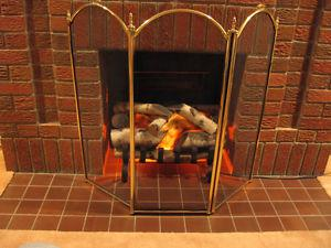 Fireplace Insert with Heater - $65