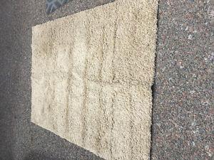 Large Cream shag rug