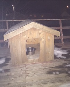 Like New Roomy dog house