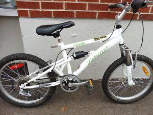 Infinity Raven Youth's 20 inch 6 speed Bike