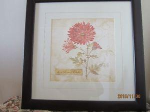 LIKE NEW GERBER DAISY PICTURE