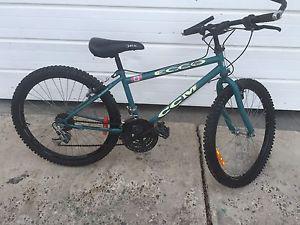 "Junior CCM 15spd Mountain Bike (24"")"