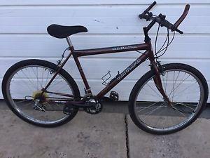Men's Triumph 15spd Mountain Bike