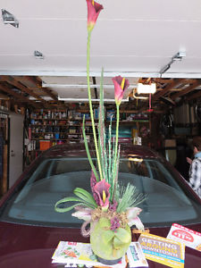 Silk Plant.