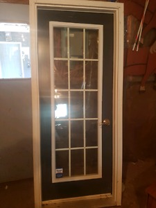 Steel door w/WINDOW and case