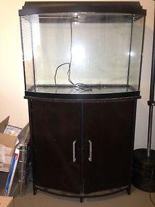 36 gallon bow front aquarium fish tank
