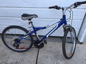 """Like New"" Junior (24"") Infinity 21spd Mountain Bike"