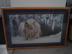 Robert Bateman framed print - the Dozing Lynx