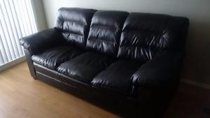Great Couch GREAT Deal