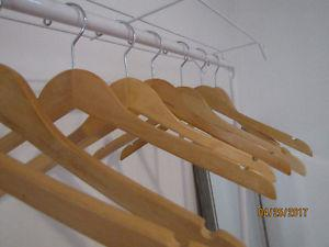 Clothing/Shoe Rack with Hangers included