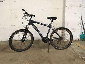 Schwinn 24 speed mountain bike