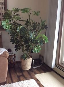 Silk plant and tower dresser for sale