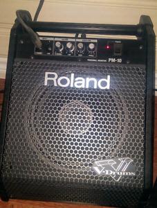 Roland Drum Amp