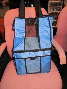 Picnic / Beach carry-all bag