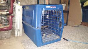 Extra large dog kennels for sale