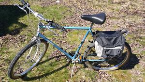 Pacer Mountain Bike