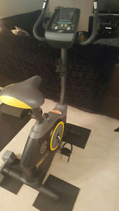 Golds Gym Bike