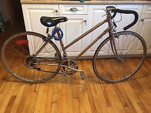 Road king road bike