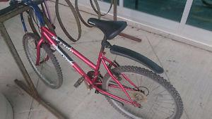 Supercycle mountain bike incl. helmet and lock, 100$