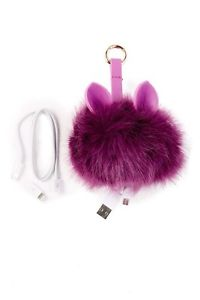 Brand New Pom Device Charger