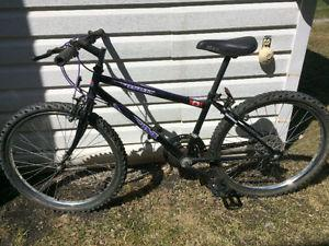 CCM 18 speed mountain bike, (24 Inch tires)