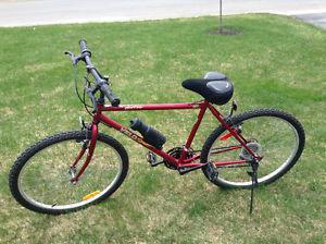 18 speed Velosport bicycle